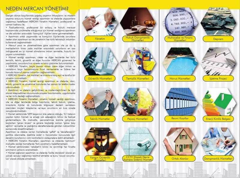 Mercan profesyonel yönetim (1)