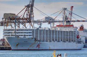 Chp'li Şahin: Şarbon Vakaları Gibi Tedbirsizlikler Yaşanmaması İçin Limanlara Gümrük Laboratuvarları Kurulması Şarttır