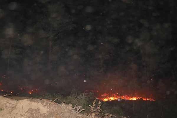 belen orman yangını 4