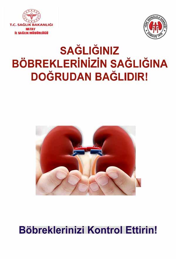 12 Mart Dünya Böbrek Günü Herkes İçin Böbrek Sağlığı