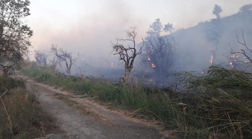 Üçgüllük Mahallesindeki Yangın Söndürüldü