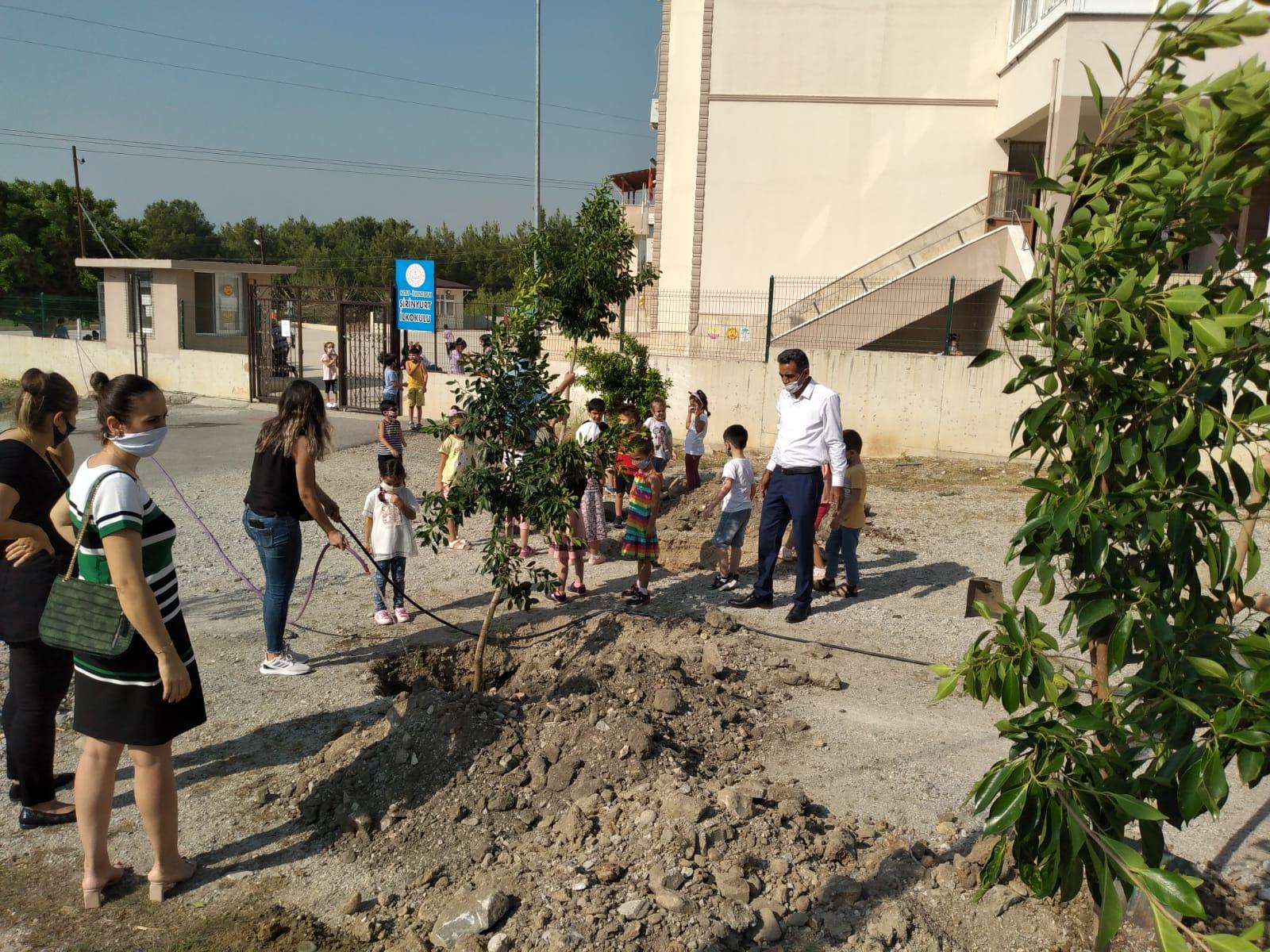 Şirinyurt İlkokulundan Ağaçlandırma Çalışması