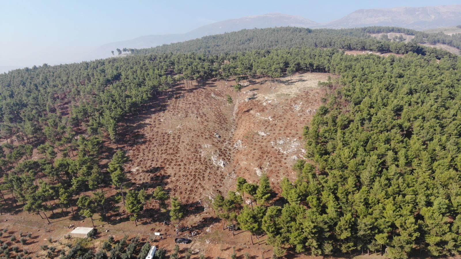 Ankara Büyükşehir Belediye Başkanı Yavaş'ın Hatay'a Gönderdıği 32 Bin Fidan Toprakla Buluştu