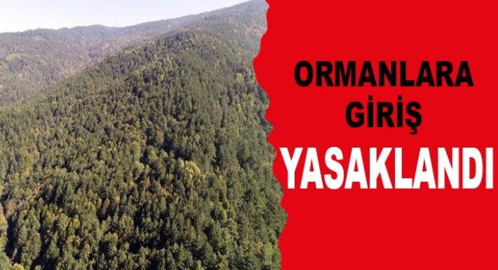 Hatay'da Tüm ormanlık alanlara giriş yasaklandı